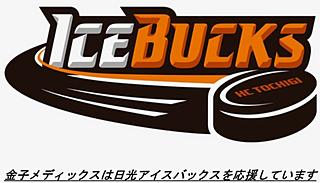HC Tochigi Nikko Ice Bag Official Website